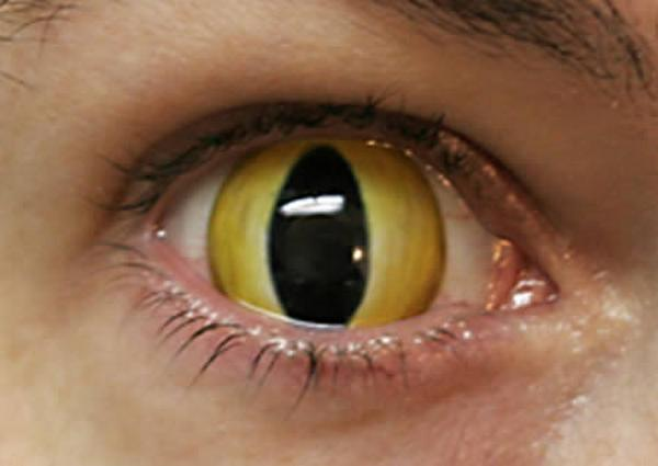 595484Most Weird Eyes Lenses Photos (3)