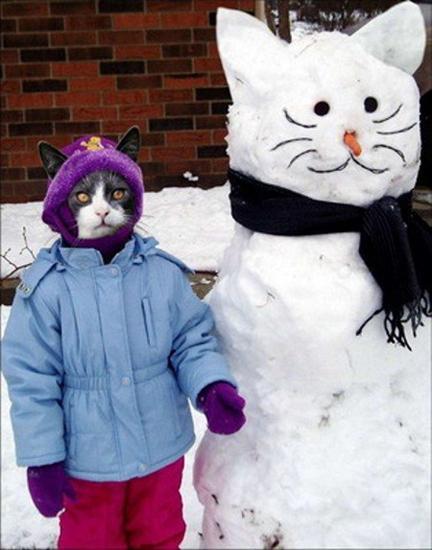 842302funny snowman 11