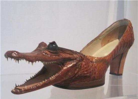 86170gator shoes e1283885377909
