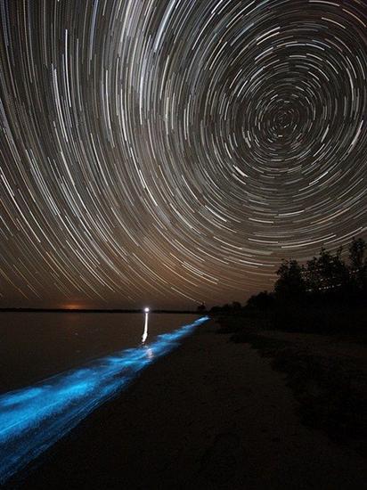 962331Australia Bioluminescent Lake